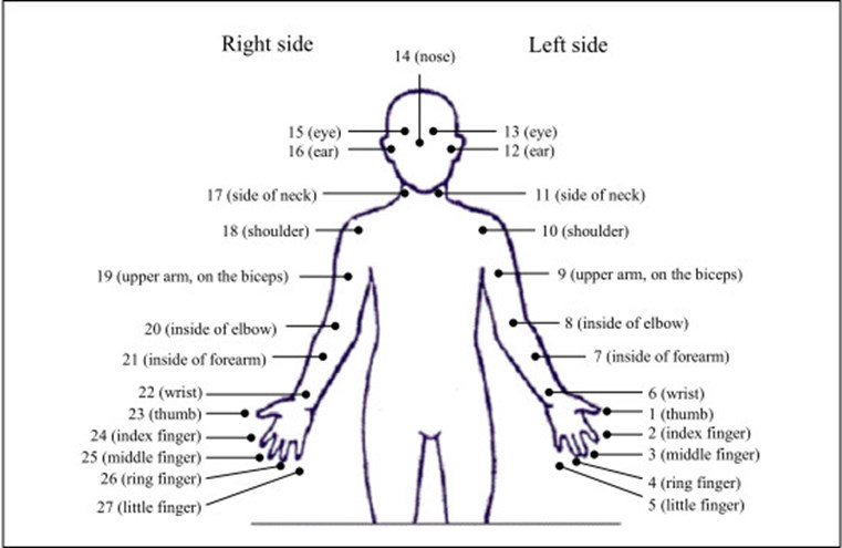 Body part tally system